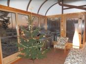 Zimní zahrada - vánoce
