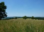 Národní přírodní rezervace - pohled z východního okraje rezervace
