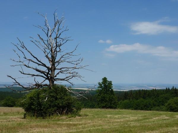 Národní přírodní rezervace Porážky